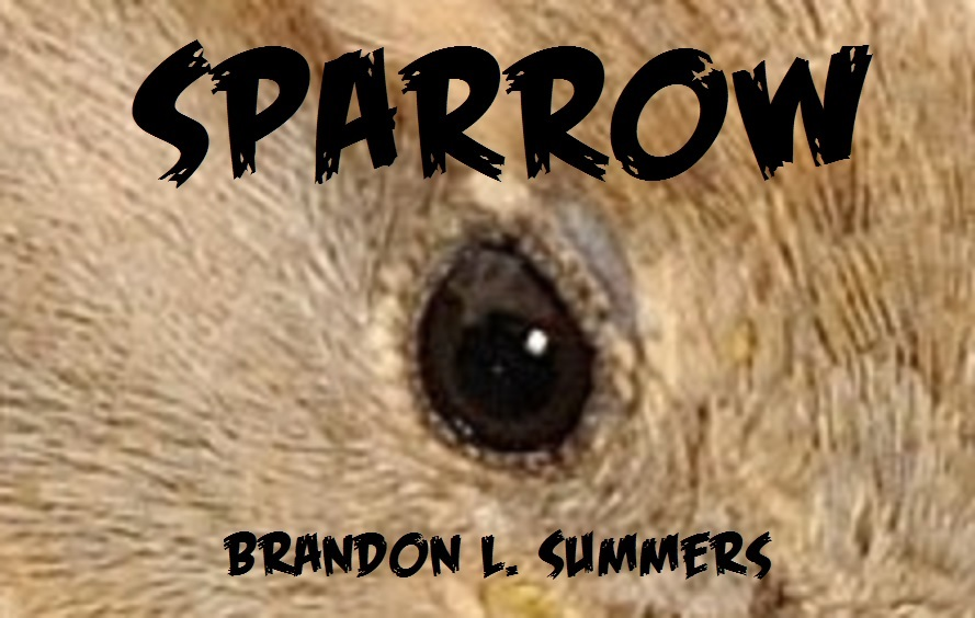 Sparrow - the superhero