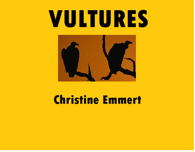 Vultures by Christine Emmert